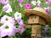 お花いっぱい!
